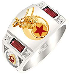 Customizable Men's Solid Back Two Tone 14k Gold Simulated Ruby Shriner Masonic Ring