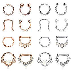 Finrezio 16PCS 16G Stainless Steel Septum Piercing Nose Rings Hoop Tragus Cartilage Retainer Body Piercing Jewelry